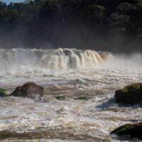 Parque Nacional Natural Yaigojé Apaporis