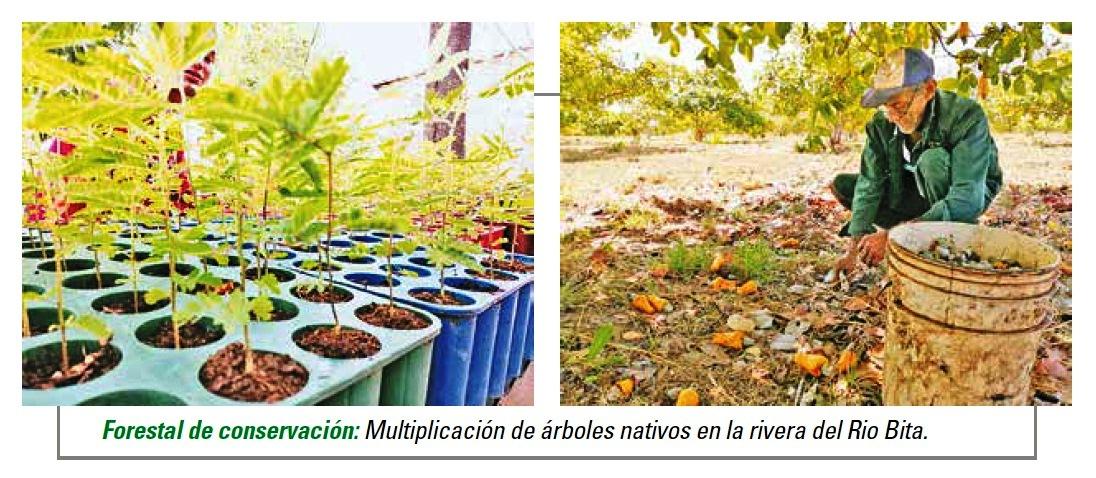 Compromiso sostenible y sustentable con el medio ambiente. Respuesta de Canapro a los  desafíos globales