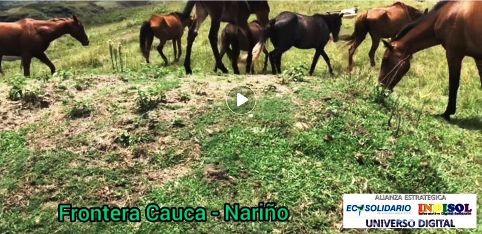 Las Palmas, en la frontera Cauca - Nariño