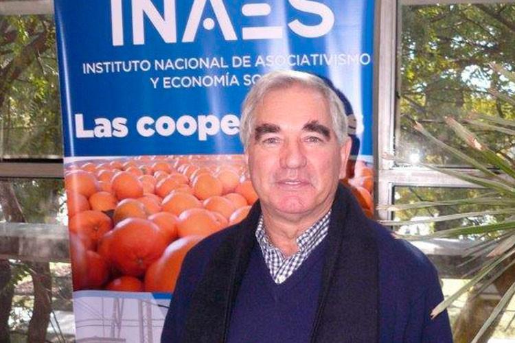 Incorporación de contenidos de cooperativismo y mutualismo en las carreras de abogacía y contador público en la Argentina
