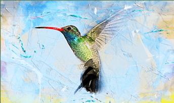 Mutualismo, una alternativa ecológica para un mundo y una sociedad en crisis
