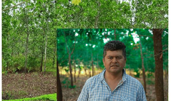 Cooperación verde, requiere verdadera cooperación para cumplir con sus objetivos