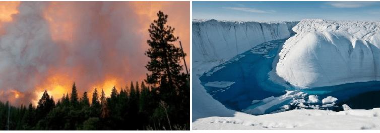 Calentamiento Global, deshielo en la Antártica, indiferencia mundial
